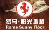 羅馬陽光地板面向西南誠招經銷商