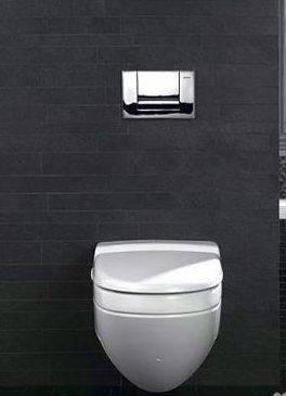 告别卫浴清洁死角 马桶水箱玩隐身设计(图)