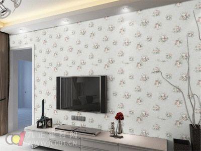 2013年電視幕墻壁紙裝修效果圖