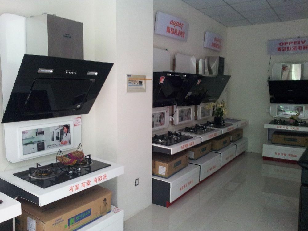 """青岛欧派电器品牌凭借自身实力,在2010年先后荣获""""中国厨卫"""
