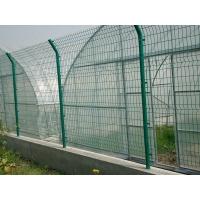焦作浸塑围栏网/铁丝网围栏网厂/浸塑围栏网