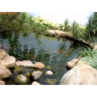 花园池塘水处理产品- MAKO SHARK(玛鲨)鱼池水景生