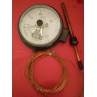 北京专业生产WTZ(Q)288压力式电接点温度计 280压力