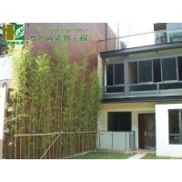 炭化木(碳化木)木墙板 木壁板 木装饰板
