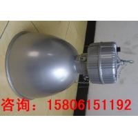 NGC9860节能高效场馆顶灯,三防高顶灯,三防厂房灯