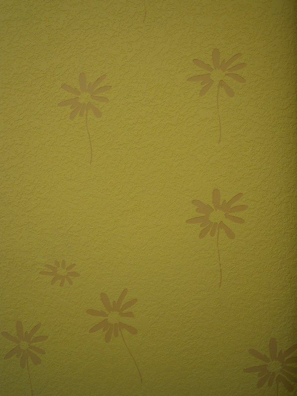 武汉大津硅藻泥大津泥环保健康的新型墙面装修材料