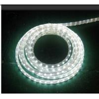 LED220V3528\\5050贴片灯带30珠\\60珠