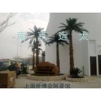 上海世博会棕榈树