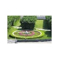 花坛钟,花园钟,城市钟,花圃钟,花卉钟,花钟