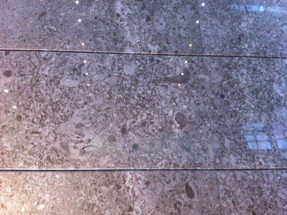 冰岛大理石花纹