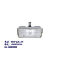 NFC9175-海洋王-长寿顶灯-40W无极灯