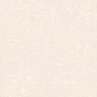 金舵陶瓷领秀中华PF8104