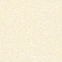 金舵陶瓷领秀中华PF8103