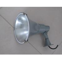 MDZG-100W三防灯, MDZG9泛光灯, MDZG3三