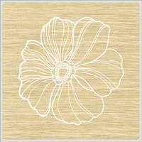 镜面木纹莲花