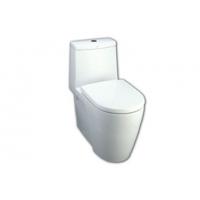 阿卡西亚3/6L节水型加长连体座厕(底排305mm)
