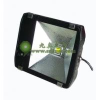 LED户外防水投光灯供应-九奥光电
