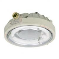 防爆环形荧光灯|CCD96防爆环形荧光灯|40W防爆环形荧光