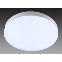 LED应急吸顶灯/应急楼道灯/应急通道灯
