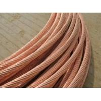 供应铜包钢绞线