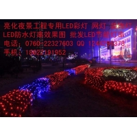 春节新款防水节日网灯亮化景观街道/LED防水网灯批发