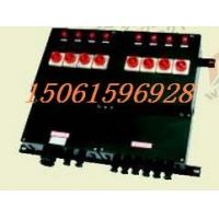 BXM(D)8050 防爆防腐照明(动力)配电箱-防爆配电箱