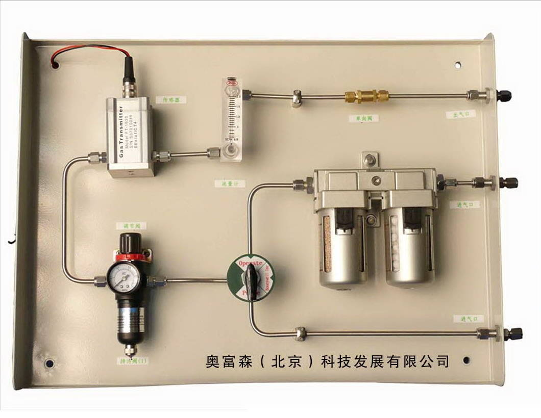 SP217型在线式氢中氧分析仪