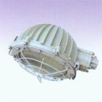 B口D60-250W防爆路灯-南京防爆器材-BAD53