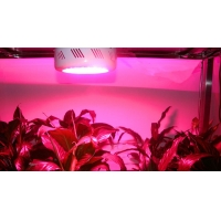 LED植物灯补光灯生长灯花期灯组培灯烟草灯