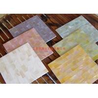 淡水贝贝壳瓷砖