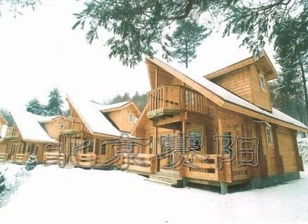 木结构-木别墅