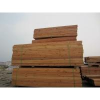 铁杉木方工地模板支架木方一根可以用10次的好木方