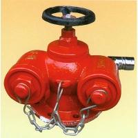 成都兴安通消防设备-新型水泵接合器