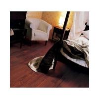 久盛实木地板--重蚁木