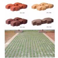 厂家直销草坪砖植草砖井字砖陶土砖烧结砖