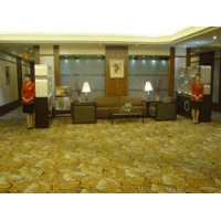 成都圣港地毯会所地毯高档尼龙地毯