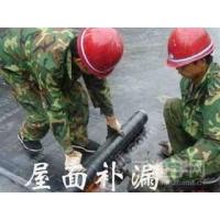 长沙专业天地防水施工队