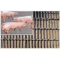 养猪网,养猪围栏,散养猪网,养野猪网