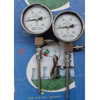 虹德测控WTYY-1021-X液体压力式电接点温度计