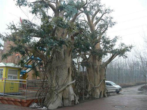 南京雕塑-天将雕塑-榕树