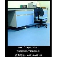 昆明 塑胶地板品牌 PVC地板价格 昆明 法国得嘉