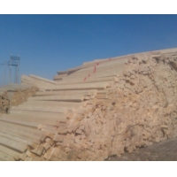 俄罗斯樟子松原板材原木材 防腐木