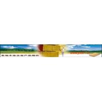 竹胶板(建筑模板)