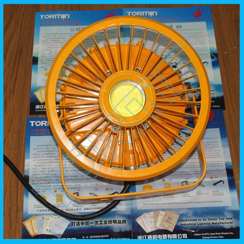 大功率LED防爆灯30W-120WLED防爆灯具