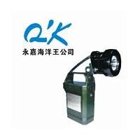 海洋王-IW5120-便携式免维护强光防爆工作灯-LED工作