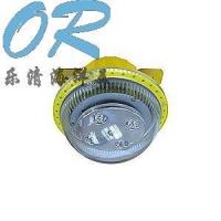 OR-BFC8183固态免维护防爆灯
