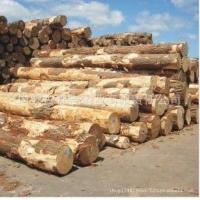 批发进口俄罗斯杨木原木 各种规格方木加工烘干板材 口料 防腐