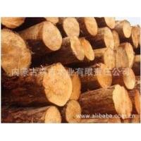 厂家批发进口俄罗斯红松原木 各种规格方木 烘干板材口料 防腐