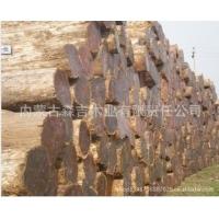 批发进口俄罗斯鱼鳞松原木 各种规格方木加工烘干板材 口料防腐