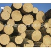 批发进口俄罗斯臭松原木 各种规格方木加工烘干板材 口料 防腐